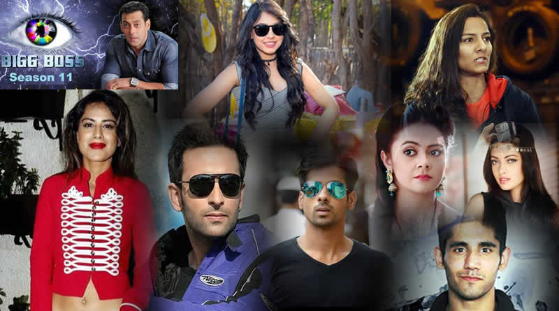 Bigg Boss 11's probable list of participants!