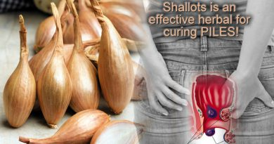 Shallots a herbal to cure piles effectually!