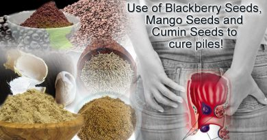Use of Blackberry Seeds, Mango Seeds and Cumin Seeds to cure piles!