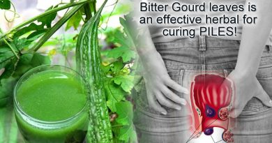 Efficacy of Bitter Gourd leaves in curing piles issues!