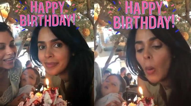 Actress Mallika Sherawat's stylish birthday celebration!