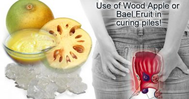 Use of Wood Apple or Bael Fruit to cure piles related issues!