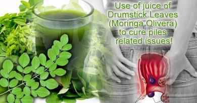 Use of juice of Drumstick Leaves (Moringa Olivera) to cure piles related issues!
