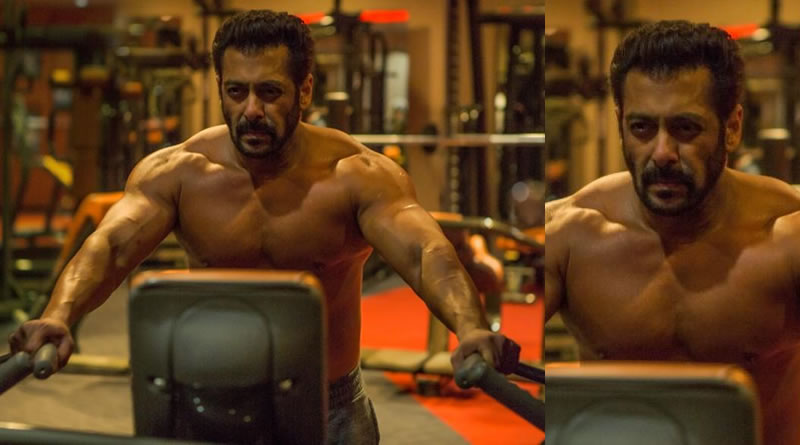 Ali Abbas Zafar reveals Salman's fitness secrets for Tiger Zinda Hai!