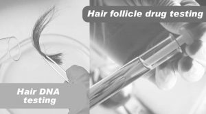 Know about Hair and about Hair DNA testing and hair follicle drug testing
