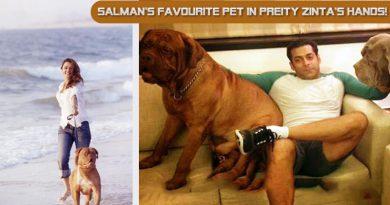 Salman's favourite pet in Preity Zinta's hands!