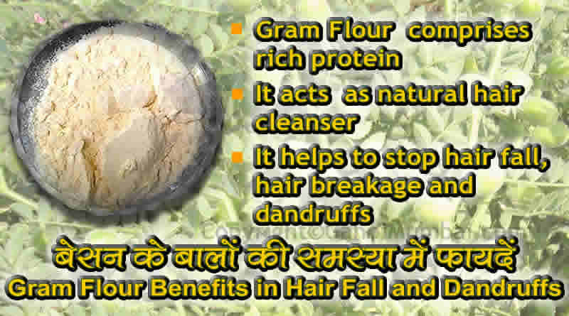 Gram flour benefits in hair fall and dandruffs