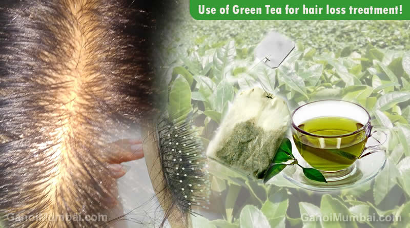 Information about Use of Use of Green Tea for hair loss treatment!