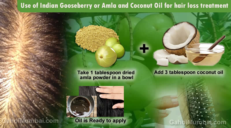 Information about use of Indian Gooseberry or Amla and Coconut Oil!