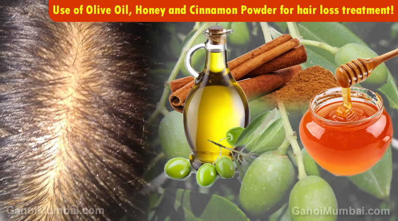 Information about Use of Olive Oil, Honey and Cinnamon Powder for hair loss treatment!
