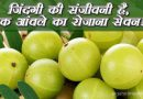 Eat One Indian Gooseberry daily is like a Sanjeevani for life!