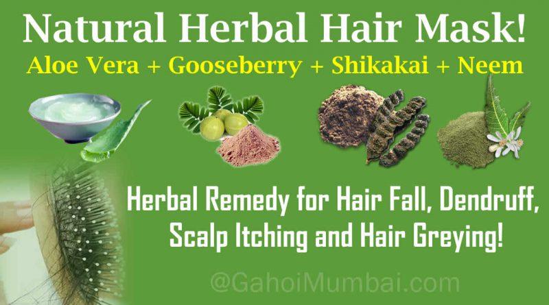 Use of Aloe Vera, Indian Gooseberry, Shikakai and Neem Powder in hair loss treatment!